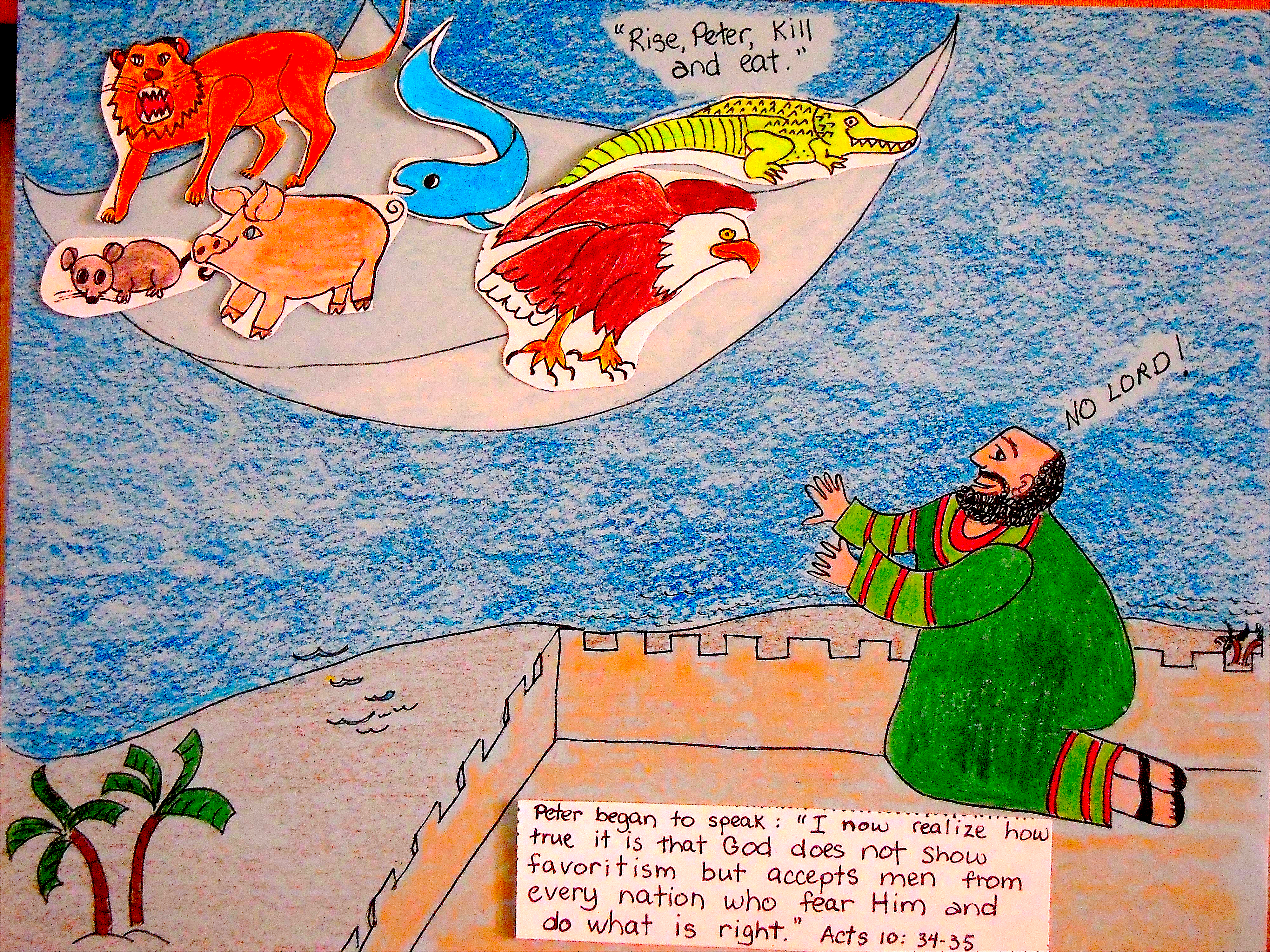 Peter's Vision | aunties bible lessons